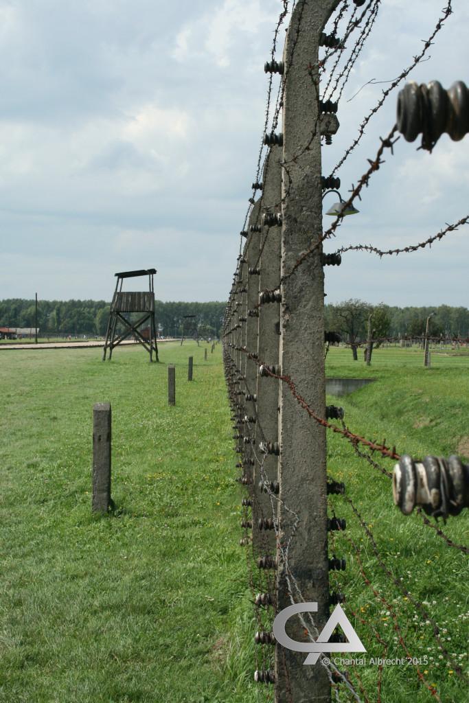 Binnenhek Auschwitz-Birkenau